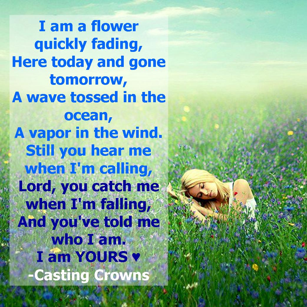 flower crown NEW 172 CASTING CROWNS FLOWER QUICKLY FADING LYRICS